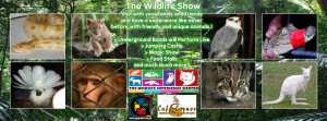 The Wildlife Show